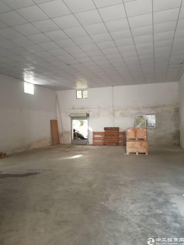 龙华大浪罗屋围一楼铁皮7米高200平28块