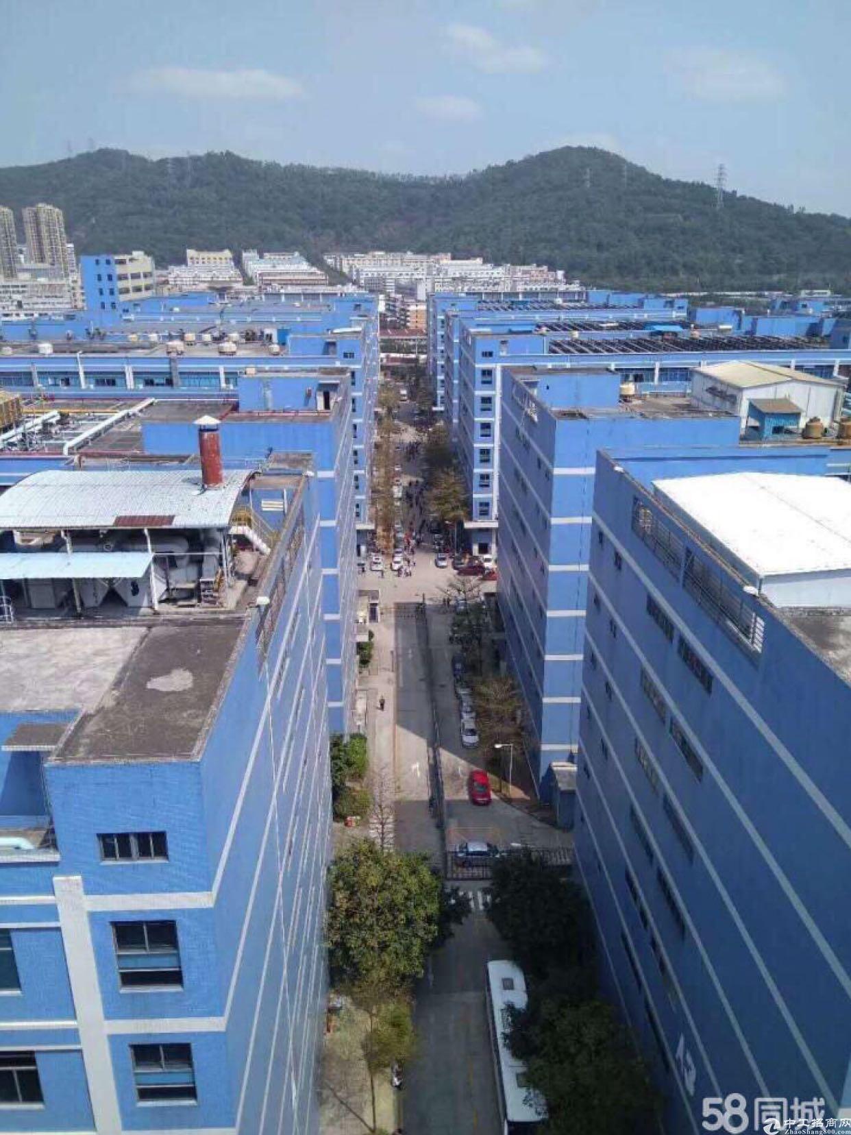 西乡固戍大门成熟工业园1000到20000平厂房出租