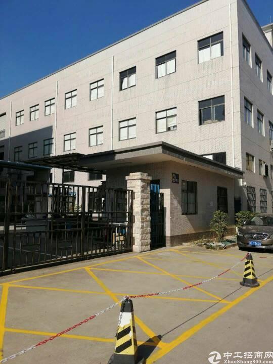惠州市泰美镇新出标准厂房