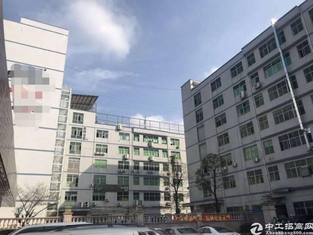 坂田上雪工业区带消防喷淋1000平米厂房出租