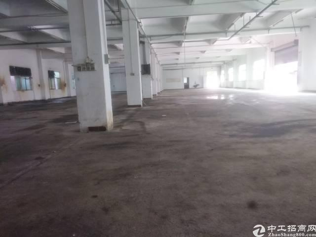 官井头靓靓靓工业区-图2