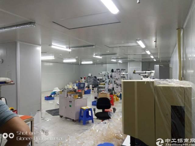 大岭山新出园区标准厂房2楼无尘车间整层