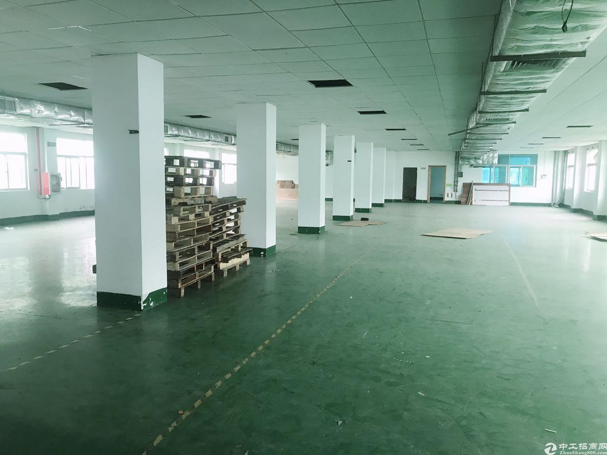 (出租)横岗安良独院钢构1300平米仓库厂房招租
