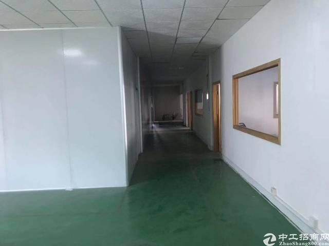 仲恺陈江红本独院带装修标准厂房26000平
