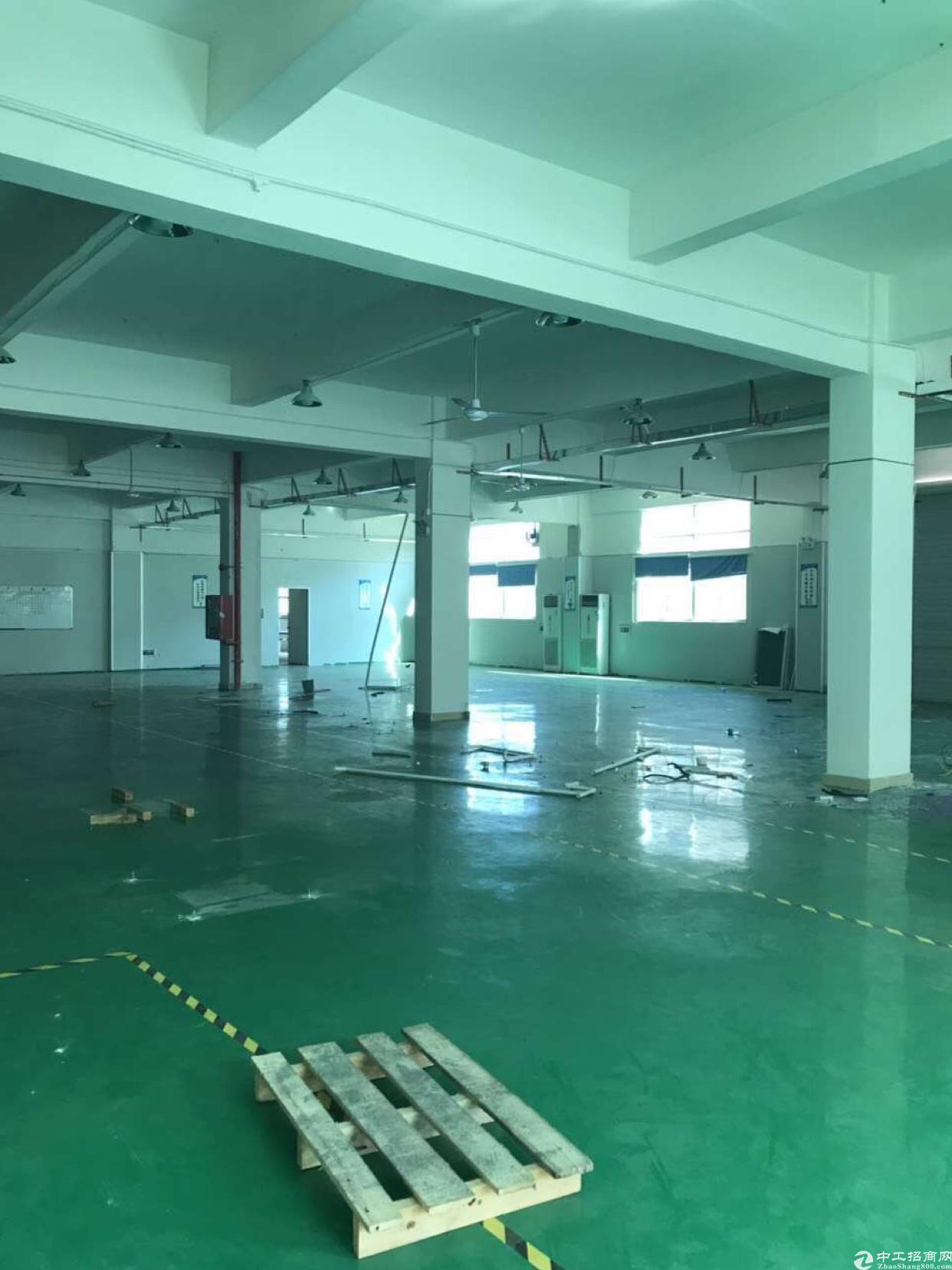 西乡臣田新出楼上2400平原房东厂房出租