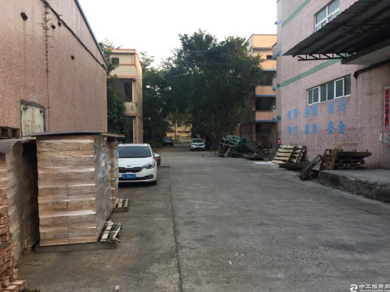 坑梓边上一楼钢结构厂房出租2000平实际面积报18元