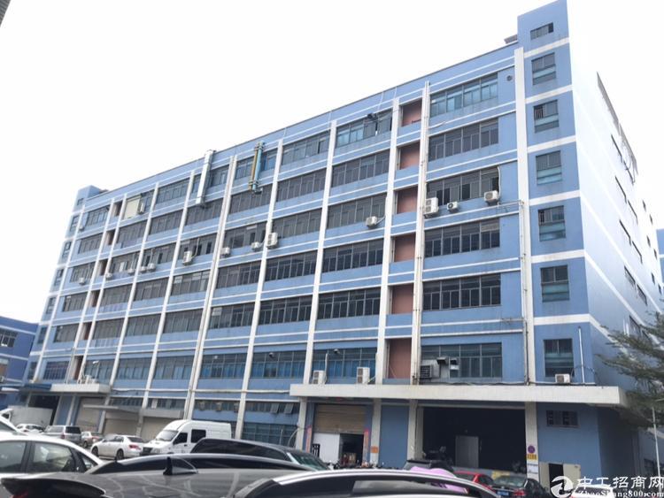 固戍新出厂房1170平米一楼,层高6米适合加工仓库