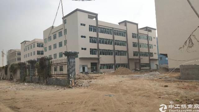 园洲独院厂房18000平米,宿舍3000