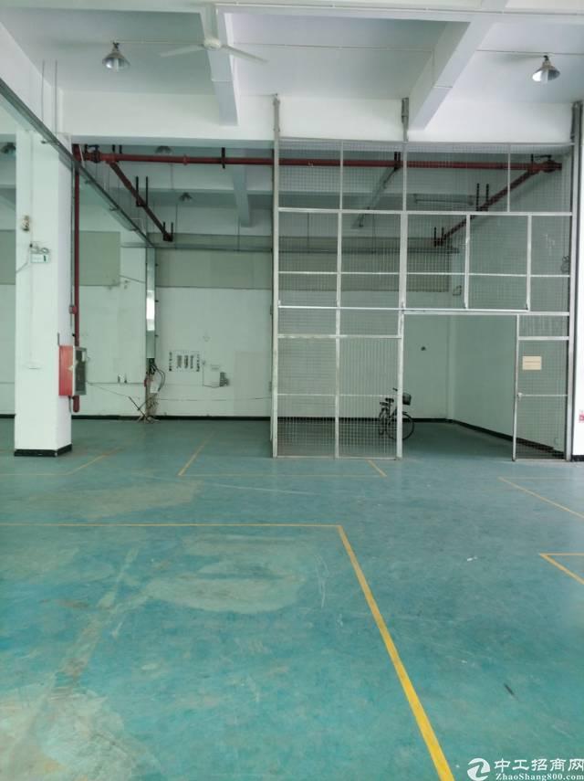 观澜一楼厂房观兰镇中心工业园标准一楼500平米出租