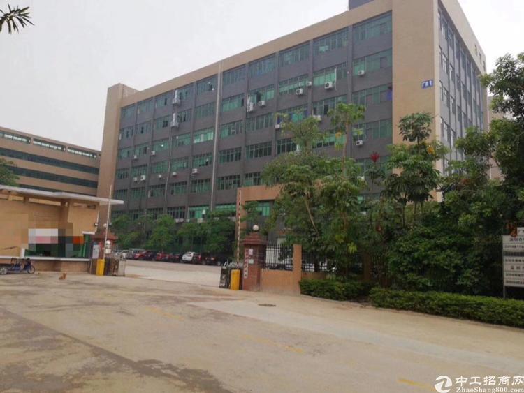 石岩水田龙大高速出口新出楼上1250平带装修厂房出租