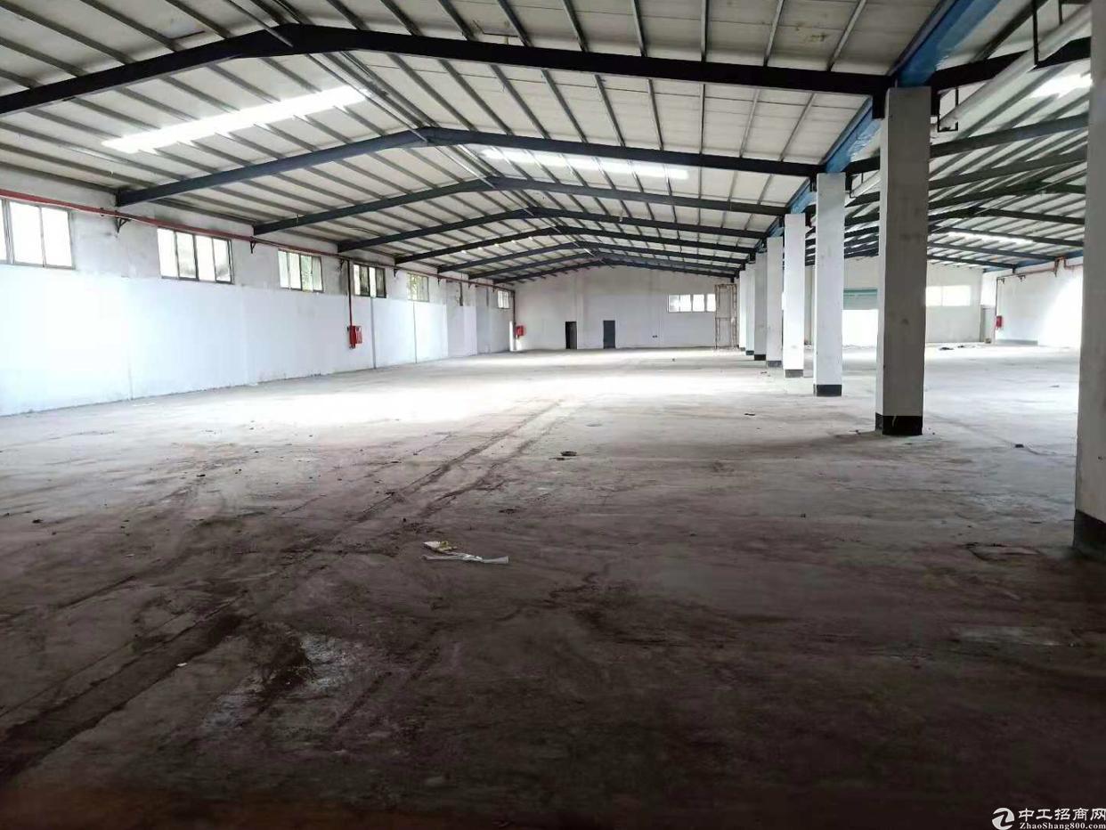 龙岗中心城爱南路旁新出独院钢构厂房2500平米招租
