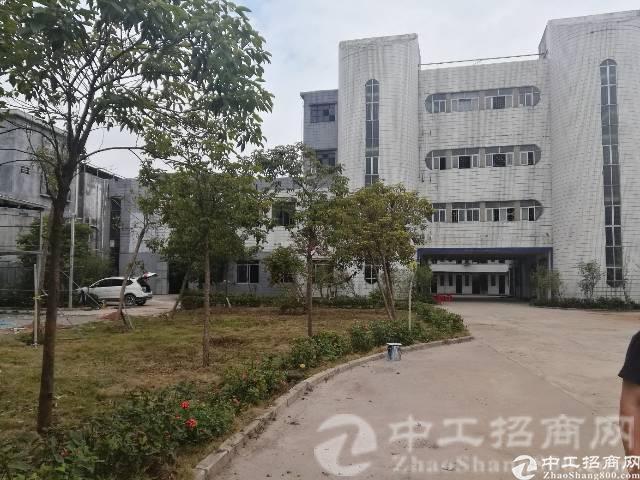 惠州市博罗县罗阳镇新出独院标准厂房8000方