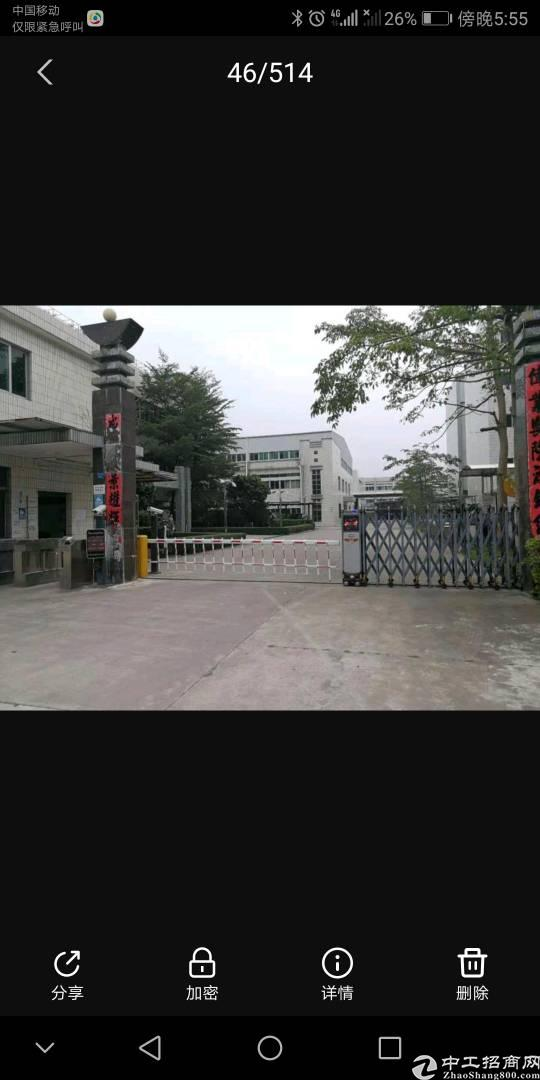 惠东白花厂房出售