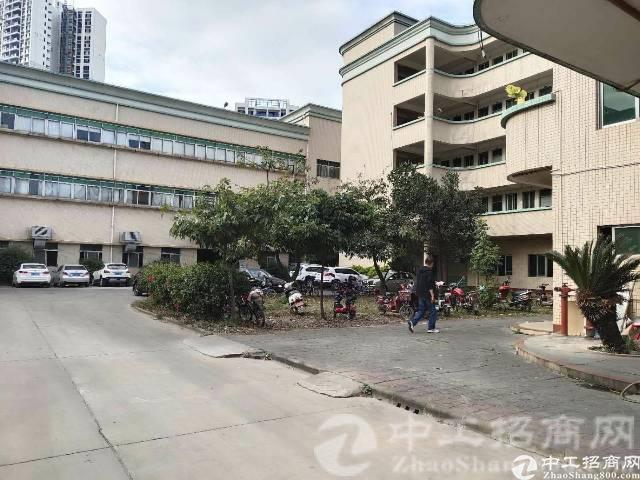 惠州市博罗县龙华镇新出独院标准厂房6000方水电齐全