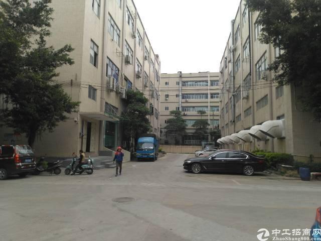 沙不福工业区新出楼上1300平方带装修厂房