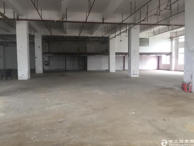 坪山新区大工业区1楼2400平米层高5米标准厂房