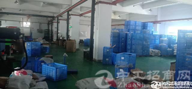龙岗同乐独院厂房一楼700平车辆进出方便厂房出租