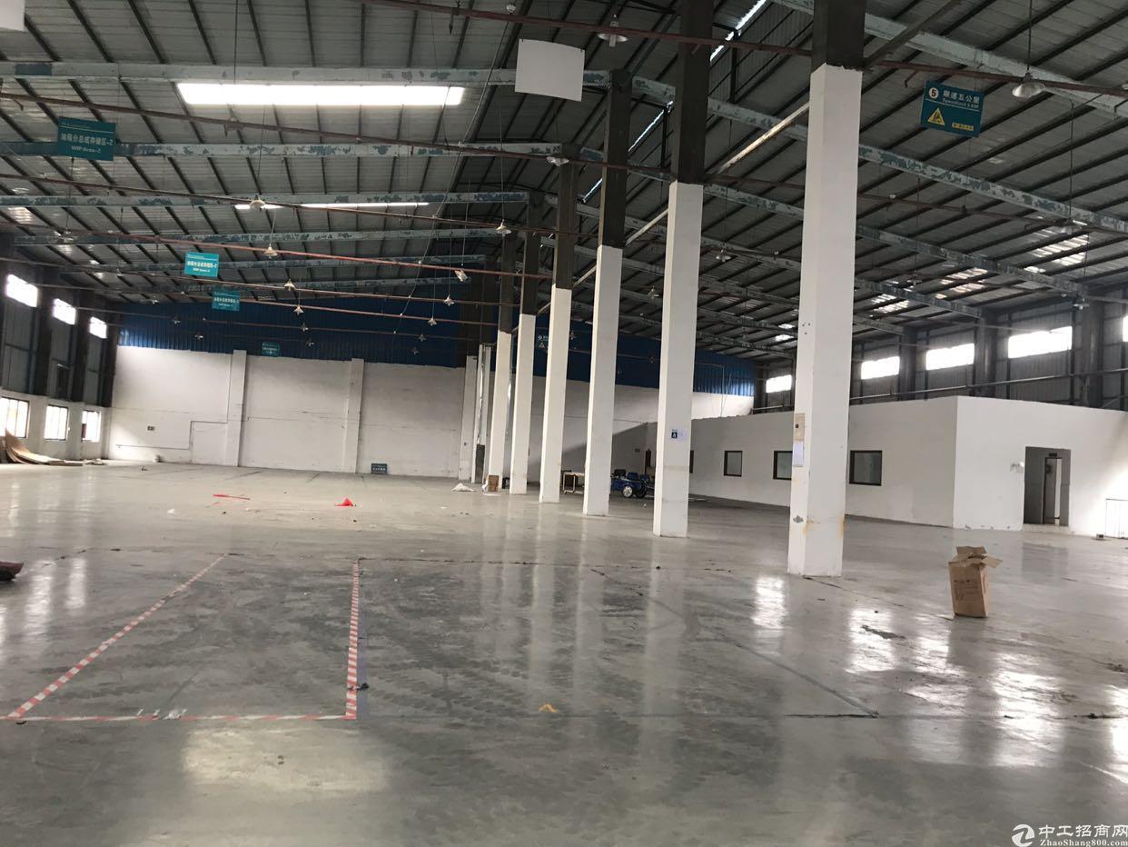 塘厦镇大坪高速出口10米高单一层钢构仓库2500平方低价出租