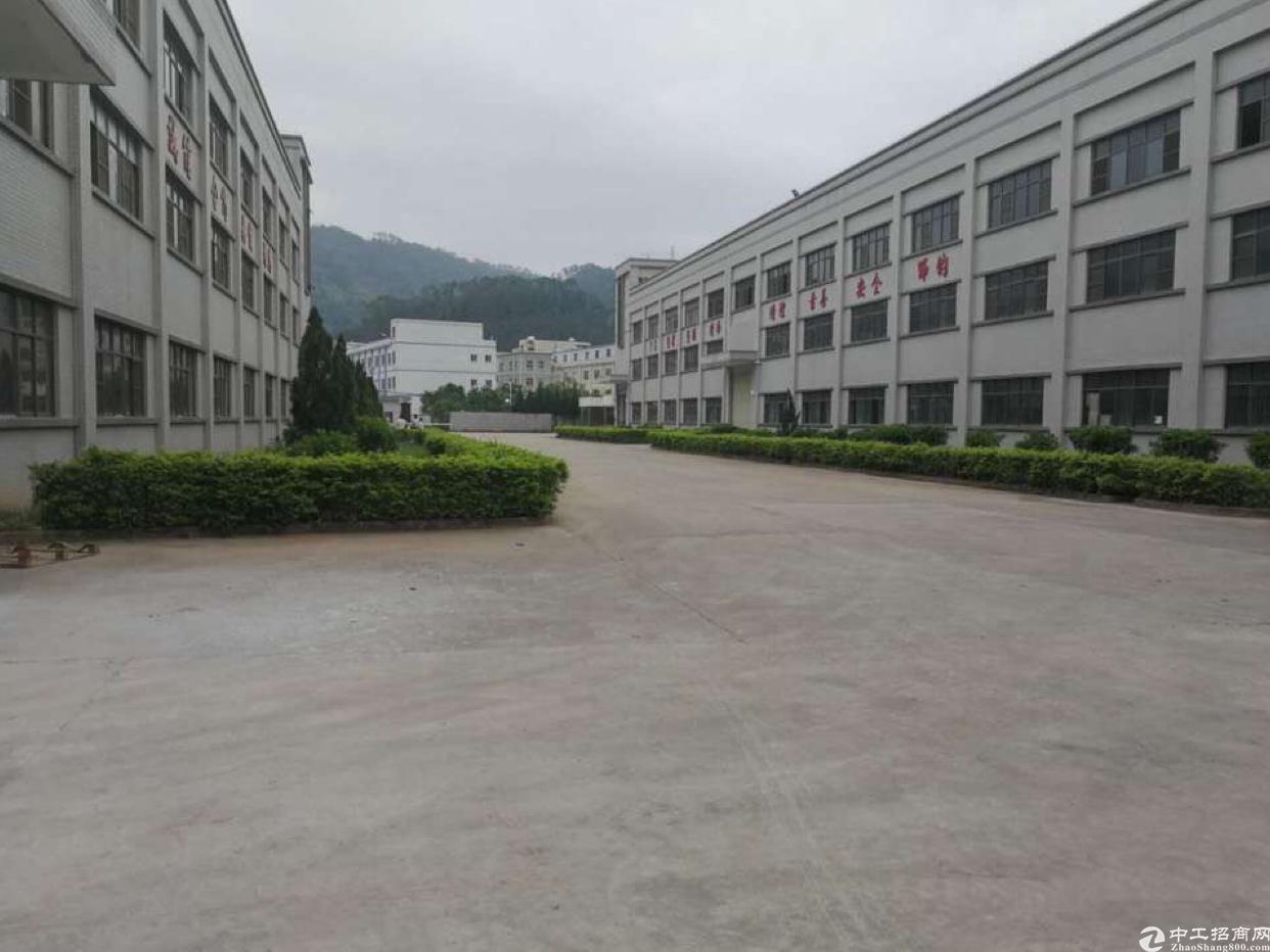 东莞樟木头临近塘厦国有证红本厂房出售25000平米升值潜力大