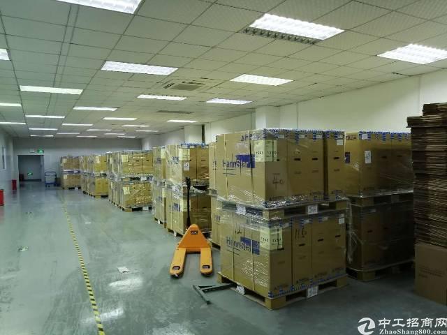 沙井东环路边上新出一楼1100平方带红本厂房出租-图3