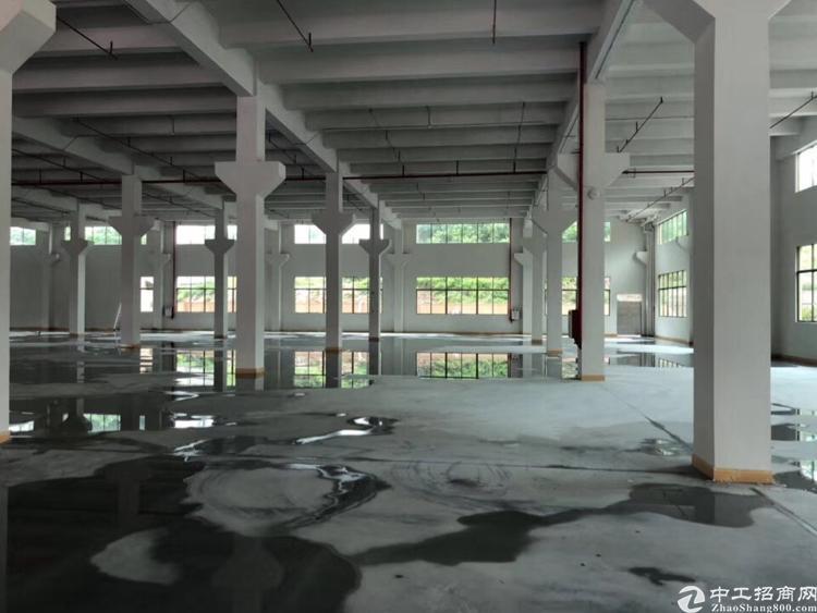 横沥镇原房东分租一楼2000平方高度6.5米