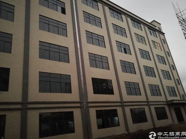 惠东白花镇占地30000建筑31508㎡国有双证厂房