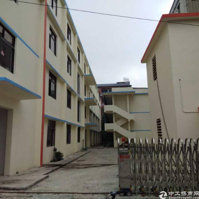 平湖富民工业区独院5600平米出租,可分租,价格特别优惠