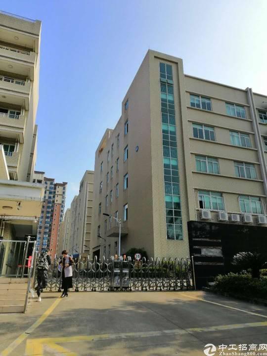 惠州市仲恺高新区独院双证齐全厂房出售19680平方