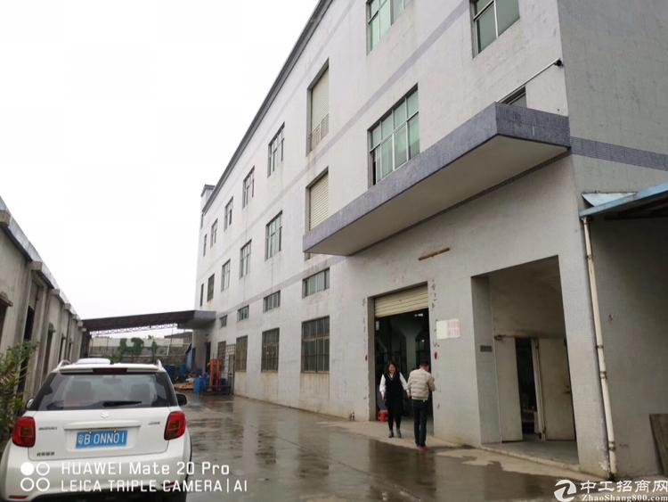 惠州市小金口新出3730平原房东独院标准厂房出租