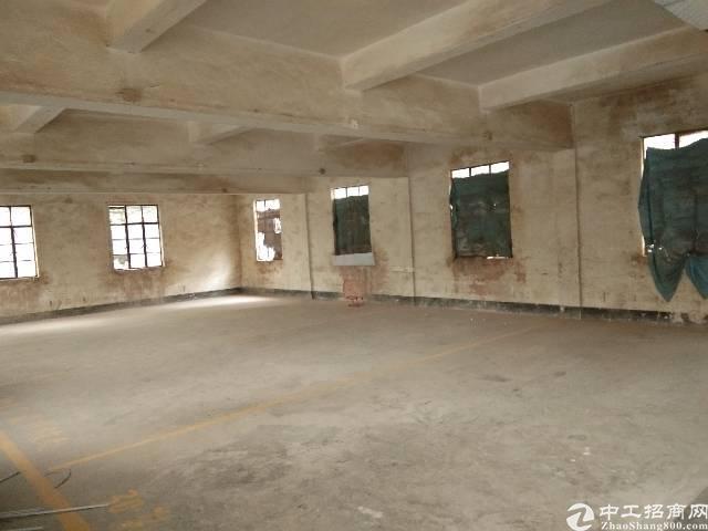 横岗高楼层150平仓储厂房出租可分租
