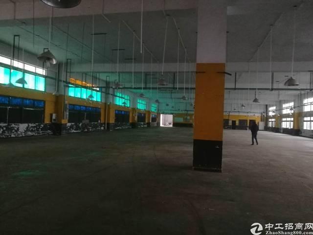 惠州仲恺区独院厂房14600平米带装修招租。-图3