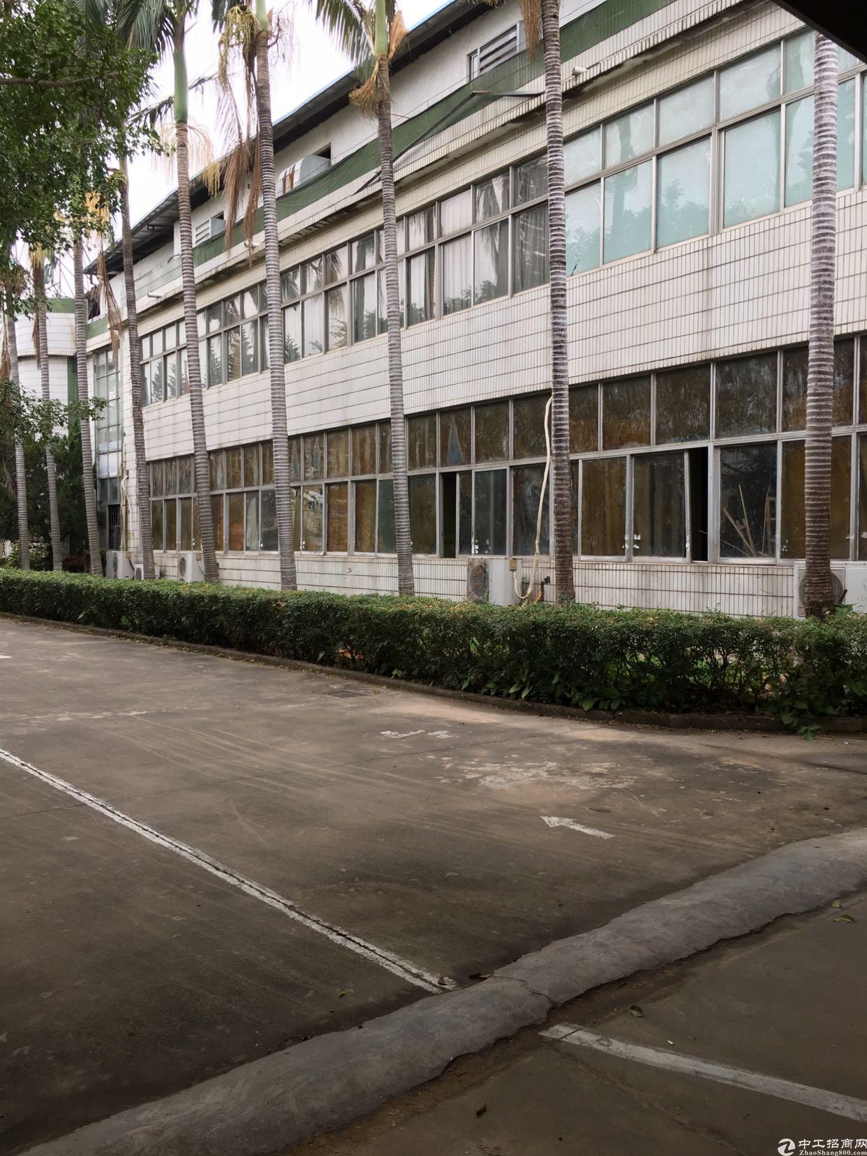 惠阳区镇隆独门独院漂亮厂房面积11000平方