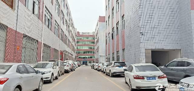 龙华新区大浪英泰工业区楼上精装厂房可分租300平,600平等