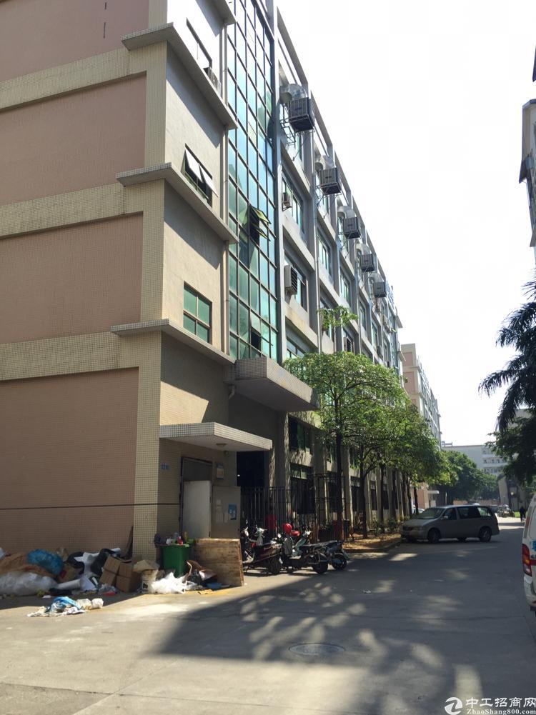 公明全新标准一楼1850平米原房东实际面积出租