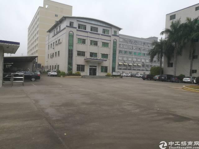 仲恺陈江红本独院带装修标准厂房26000平-图3