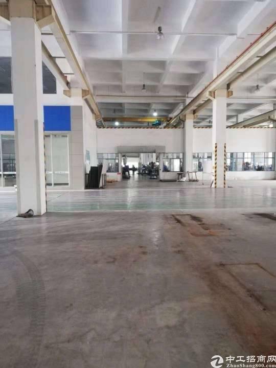 新出红本独院厂房13000平出售年限32年-图2