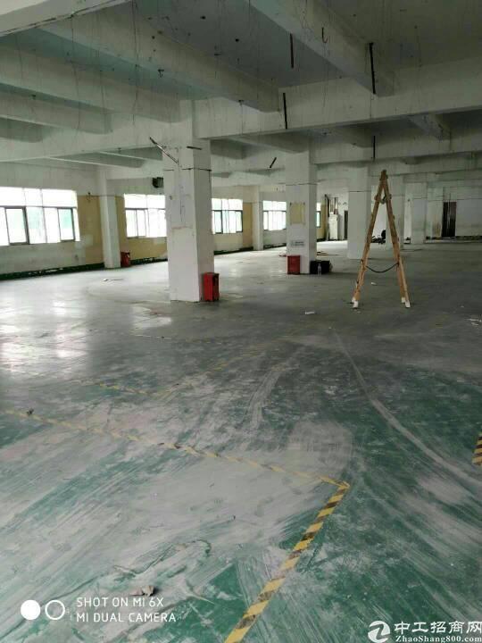 西乡固戍二路超靓厂房1400平方租金32元