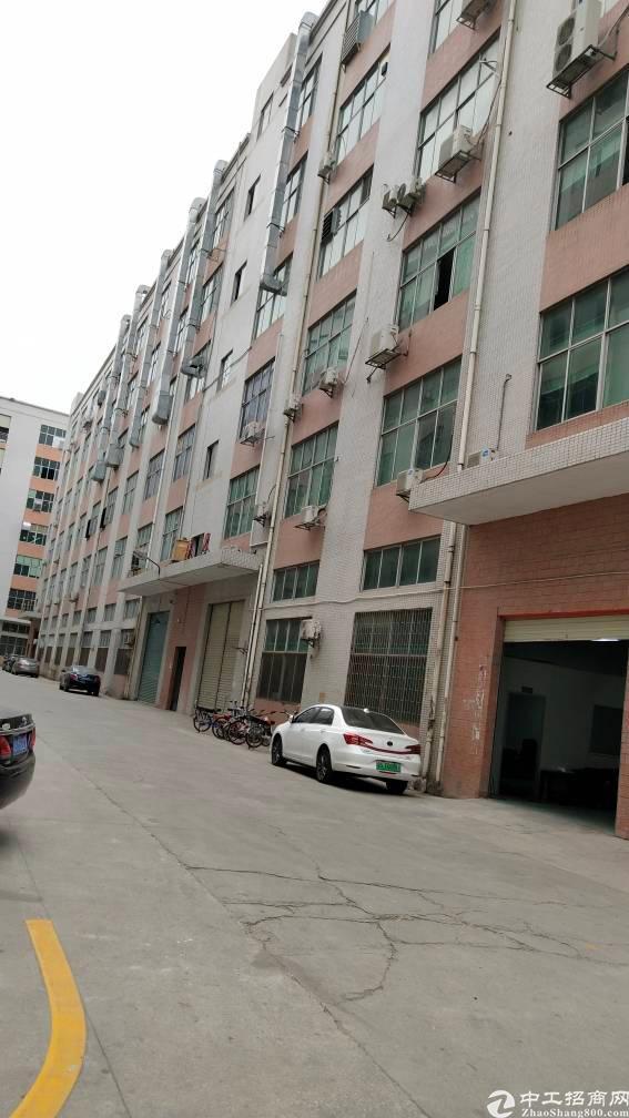平湖红本原房东厂房5000平方大型工业区,可分租500平