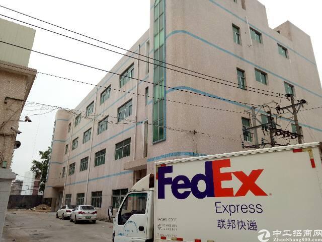 坑梓中心地段新出一楼厂房1800平米