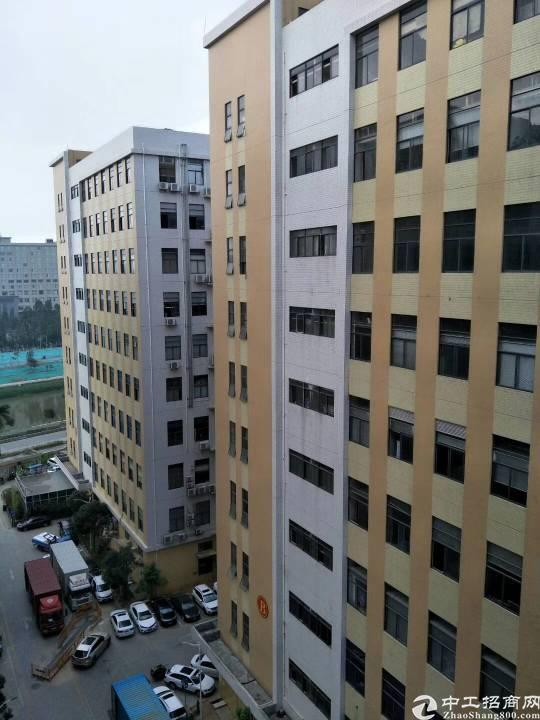 光明区大型工业园园楼上3500平方带豪华装修厂房出租