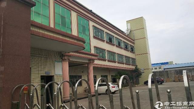园洲独院厂房8000平米,宿舍2000也可分租