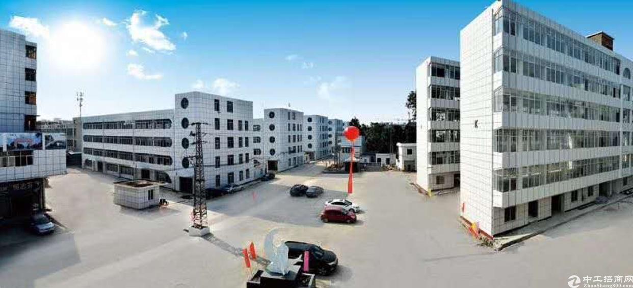 东莞市望牛墩与万江交接处工业园区每栋可隔独院