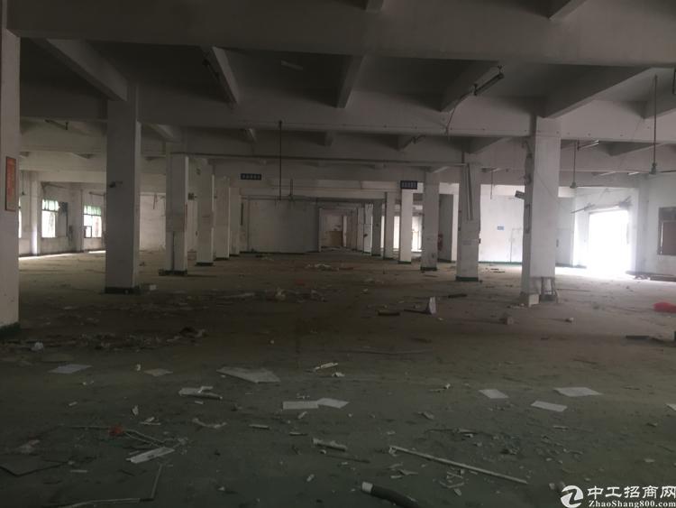 坪山标准独院厂房8000平方米,有红本,合同期长