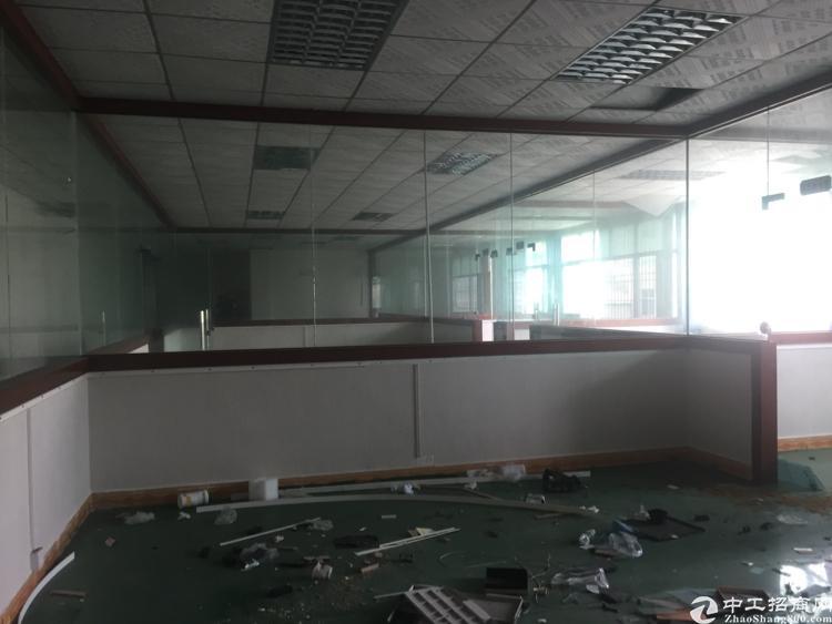 坪山高大上一楼层高5.8米2000平米标准厂房招租
