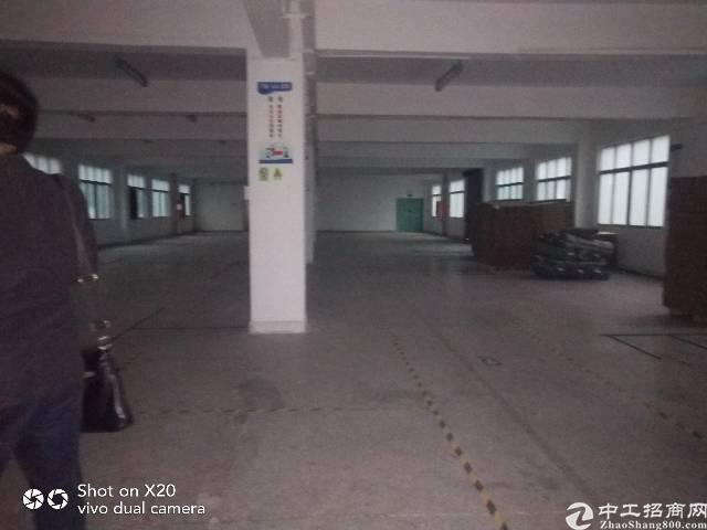 观澜梅观高速出口原房东厂房