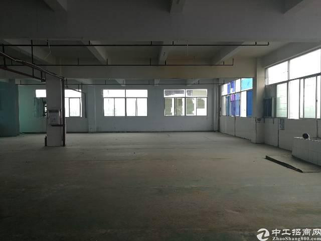 凤岗镇油甘埔新出带地坪漆、消防喷淋标准厂房5楼700平