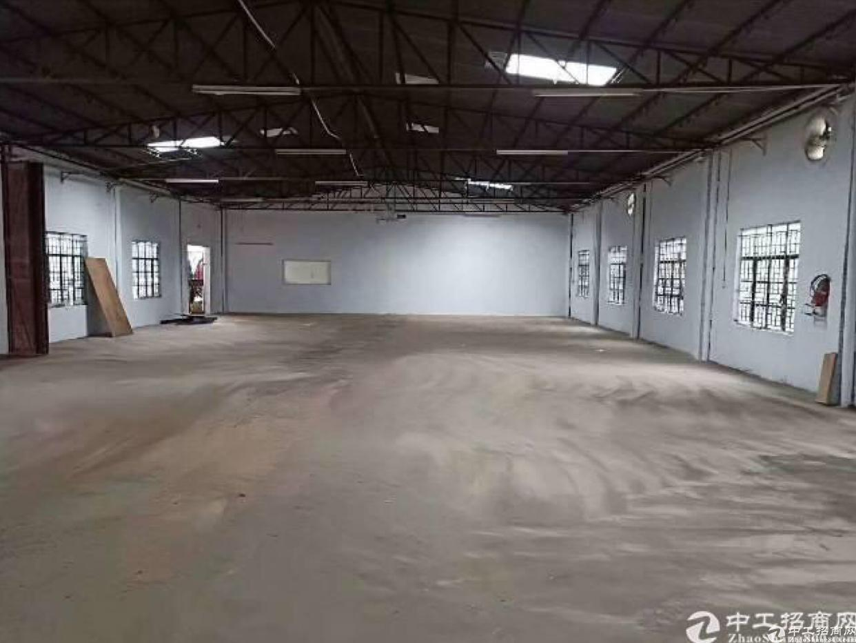 坂田杨美附近新出钢构1500平出租