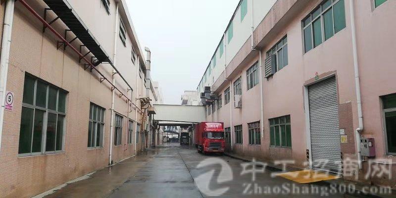 万江石美标准厂房1-3层每层1300平方出租