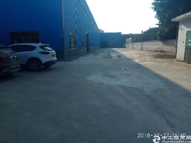 惠州市石湾镇原房东独门独院钢构厂房8700平方低价出租