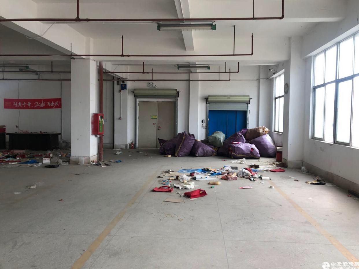 布吉新出4000平标准仓库.